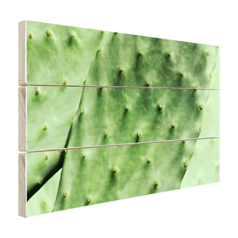 Barbary cactusblad mintgroen Hout