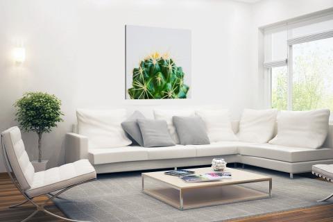 Cactus foto Canvas