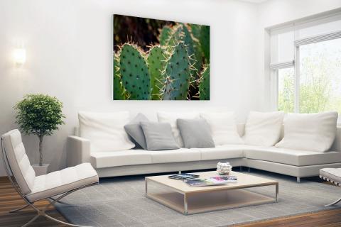 Cactus fotoprint botanic Glas
