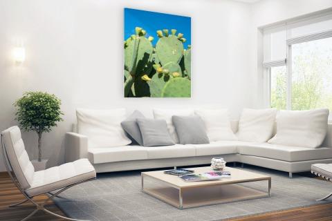 Cactus in USA met blauwe lucht Glas