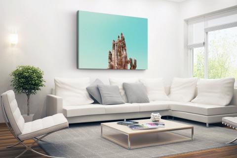 Cactus onder blauwe hemel print Canvas