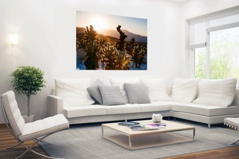 Cactusprint in de VS Poster