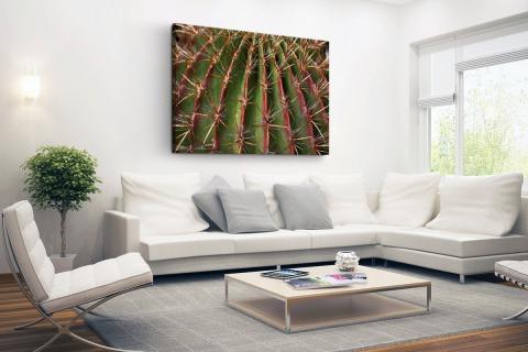 Close-up cactus fotoprint Canvas