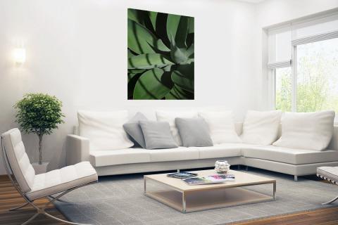 Close-up van de bladeren van een cactus Poster
