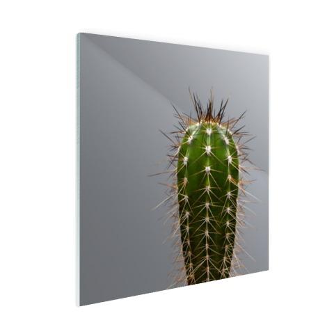 Cactus botanische print Glas