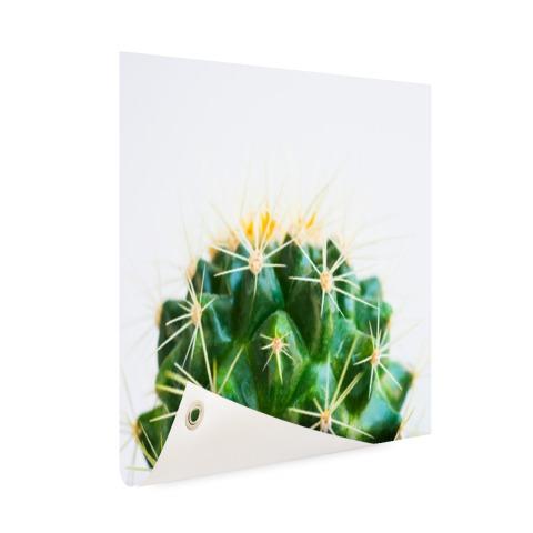 Cactus foto Tuinposter
