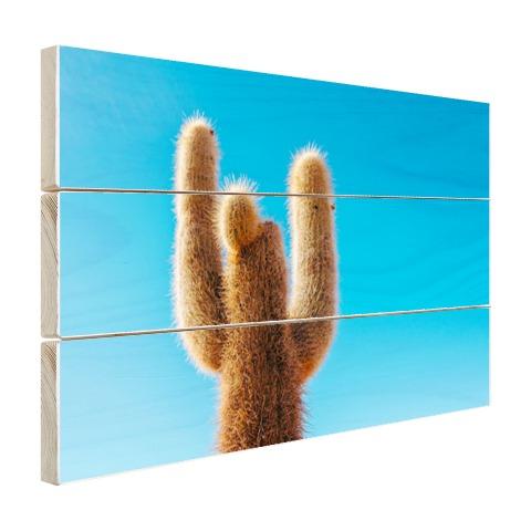 Cactus met blauwe hemel Hout