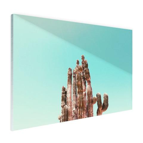 Cactus onder blauwe hemel print Glas