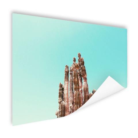 Cactus onder blauwe hemel print Poster