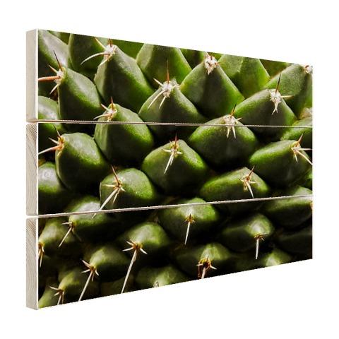 Cactuspatronen Hout