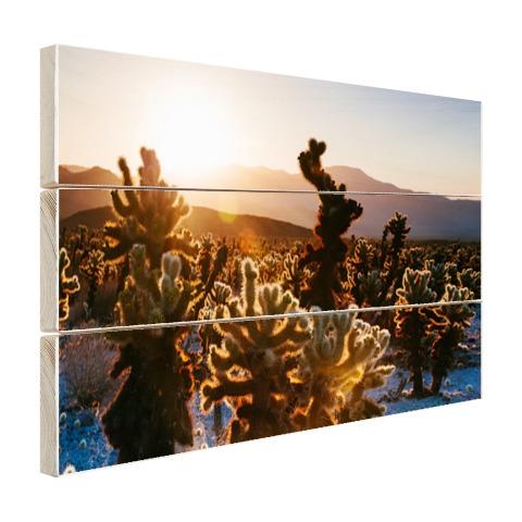 Cactusprint in de VS Hout