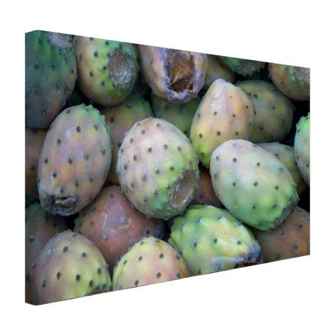 Cactussen op de markt Canvas