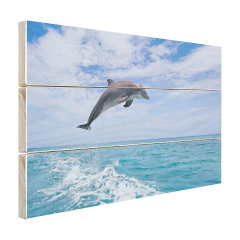 Bottlenose dolfijn springt Hout