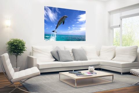 Dolfijn bij helder blauwe lucht foto Poster