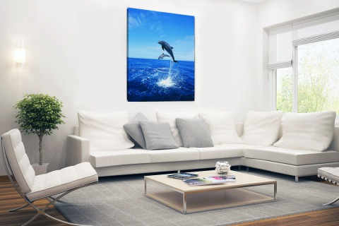 Dolfijn in blauw water Canvas