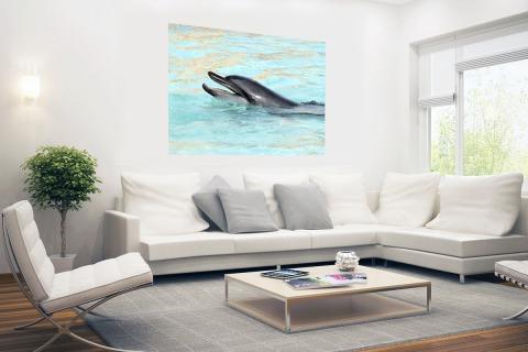 Dolfijn zwemmend fotoprint Poster