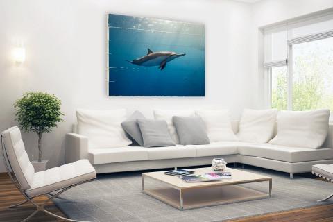 Fotoprint van een dolfijn Hout