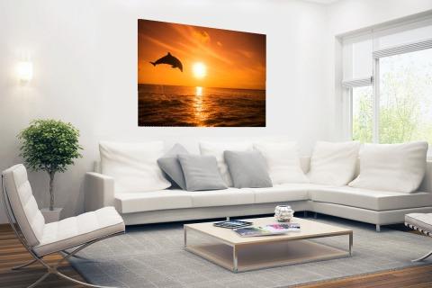 Springende dolfijn bij zonsondergang Poster