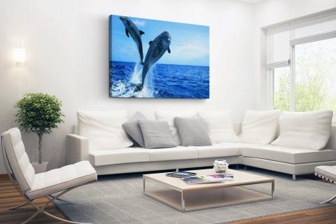 Springende dolfijnenfoto Canvas