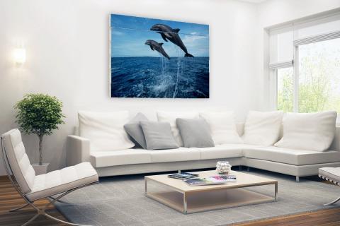 Tuimelaars springen boven het water Hout