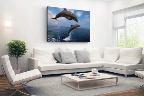 Twee springende dolfijnen in het water Canvas