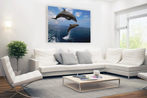 Twee springende dolfijnen in het water Hout