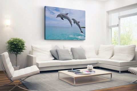 Twee springende tuimelaars Canvas