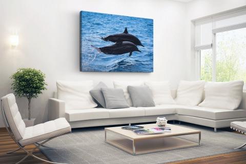 Twee tuimelaars springen boven het water Canvas