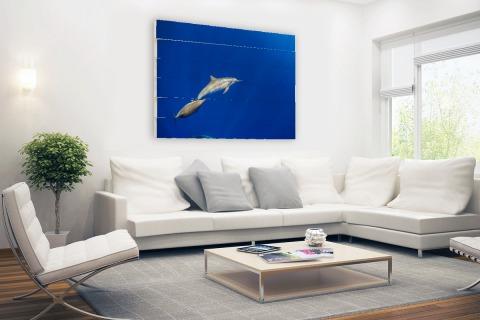 Zwemmende dolfijnen onderwater foto Hout
