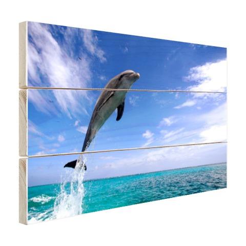 Dolfijn bij helder blauwe lucht foto Hout