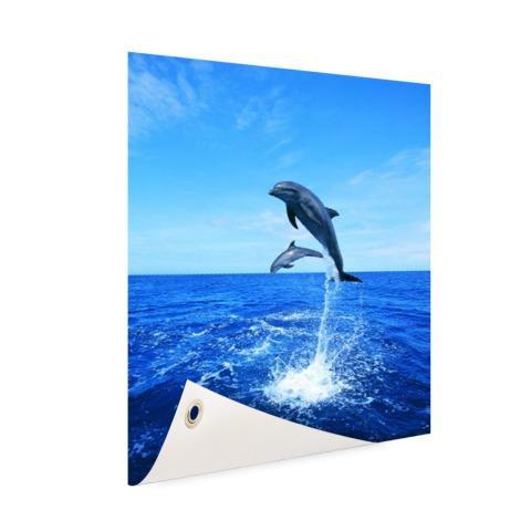 Dolfijn in blauw water Tuinposter