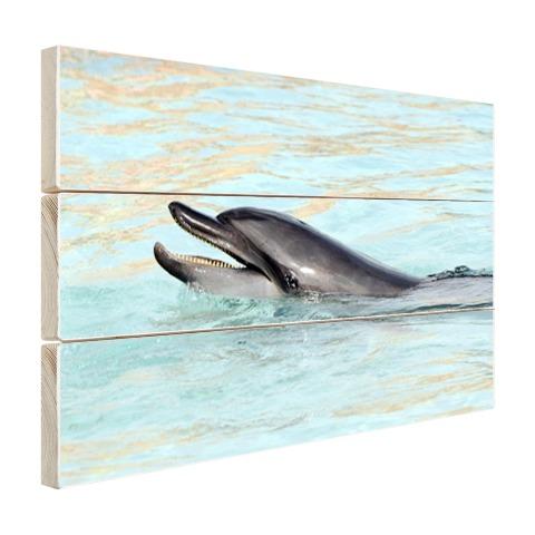 Dolfijn zwemmend fotoprint Hout