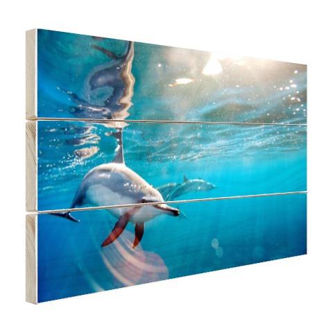 Spinner dolfijnen in helder water Hout