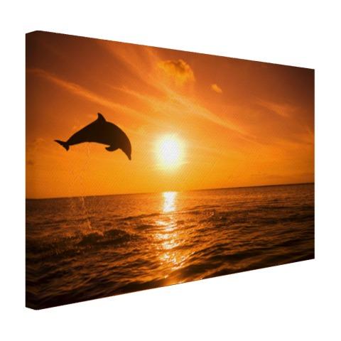 Springende dolfijn bij zonsondergang op canvas