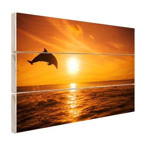 Springende dolfijn bij zonsondergang Hout