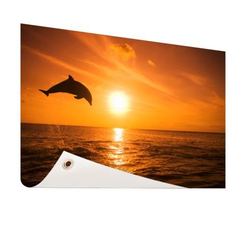 Springende dolfijn bij zonsondergang Tuinposter