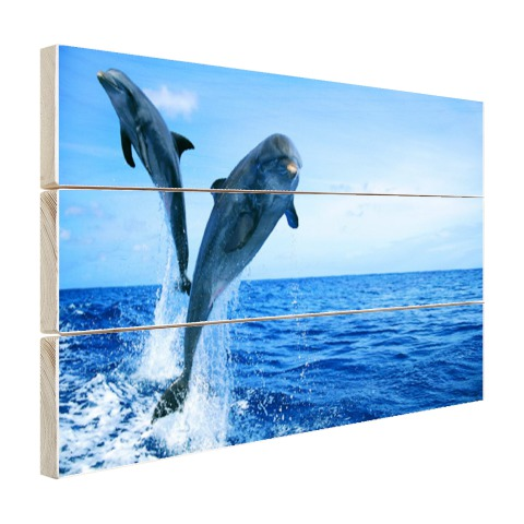 Springende dolfijnenfoto Hout