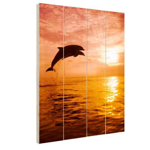 Twee dolfijnen bij zonsondergang foto Hout