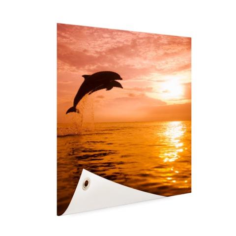 Twee dolfijnen bij zonsondergang foto Tuinposter