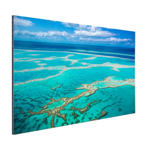 Great Barrier Reef foto afdruk Aluminium