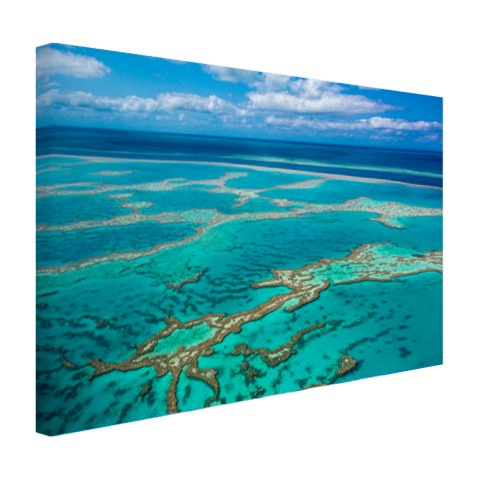 Great Barrier Reef foto afdruk Canvas