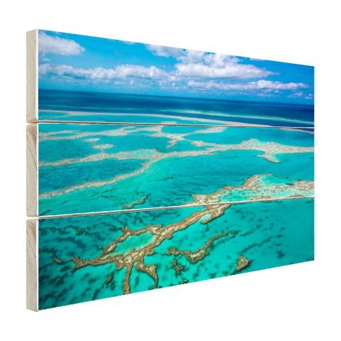 Great Barrier Reef foto afdruk Hout