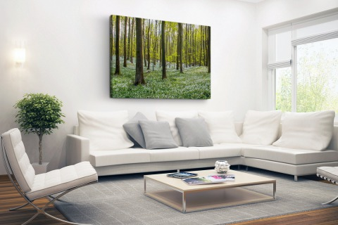 Foto van bos in de lente Canvas