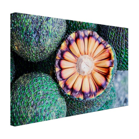 Braziliaans fruit fotoprint Canvas