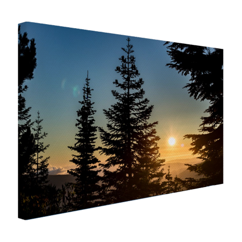 Zonsopkomst nationaal bos Canvas