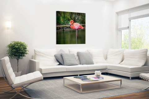 Een roze flamingo Canvas