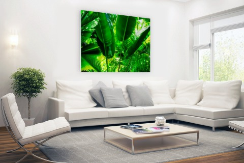 Tropische bladeren in jungle fotoprint Glas