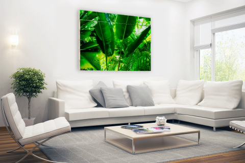Tropische bladeren in jungle fotoprint Hout