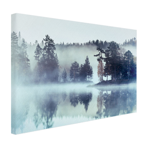 Bos omringd door mist Canvas