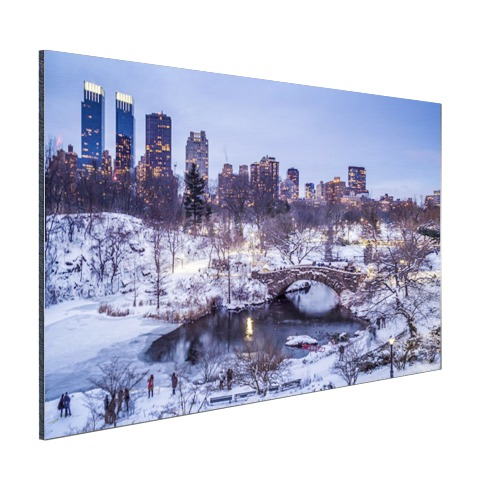 Foto Central Park NY in de winter op aluminium afgedrukt